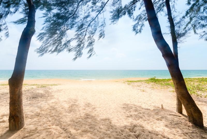 Casuarina beach.featured